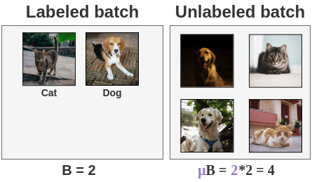 Ratio of Labeled to Unlabeled Images