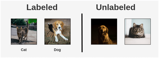 Example of Labeled vs Unlabeled Images