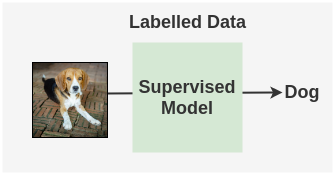 Usual Supervised Learning Approach