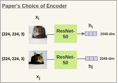 ResNet-50 as encoder in SimCLR