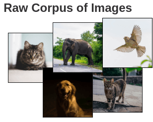 Corpus of millions of images